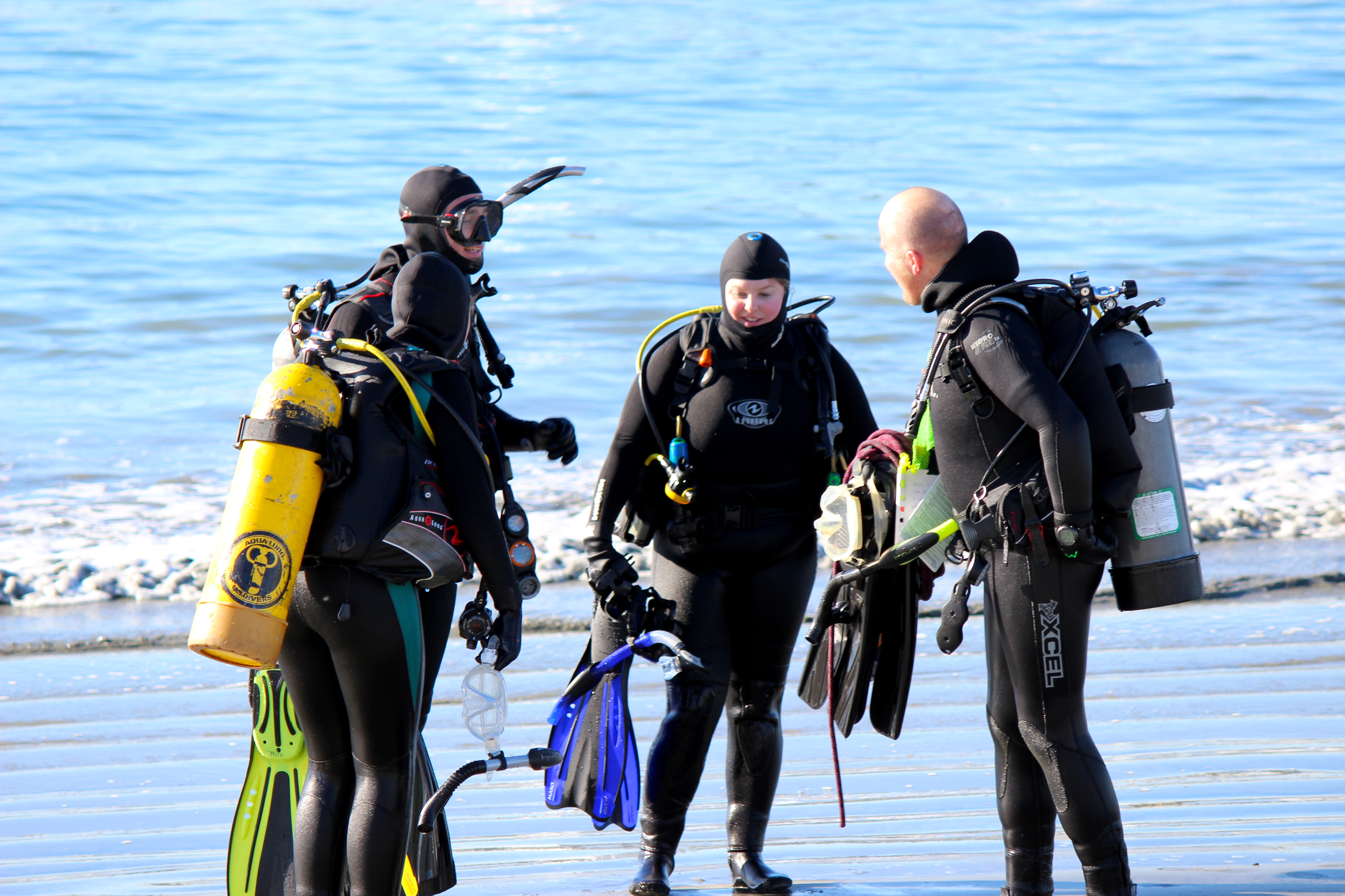 Open Water Scuba Diver Instructor